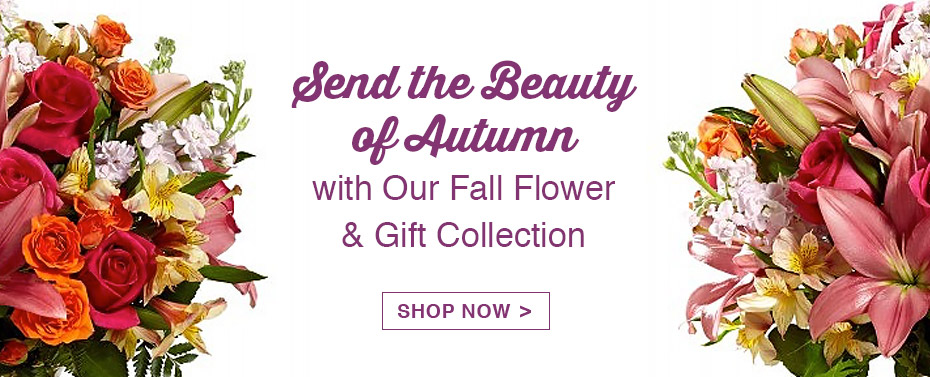 Fall Flower Collections