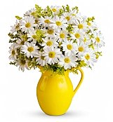 Flower Bouquets: Sunny Day Pitcher of Daisies